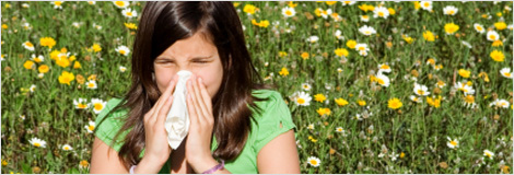Take the Allergies Quiz!
