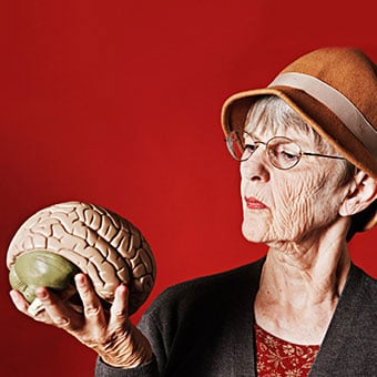 A senior woman examines a model brain.