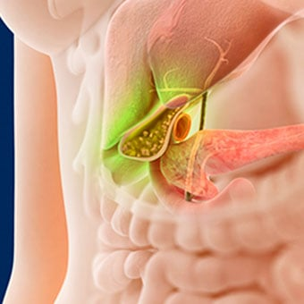 Alt TextThe gallbladder, located beneath the liver, produces bile.