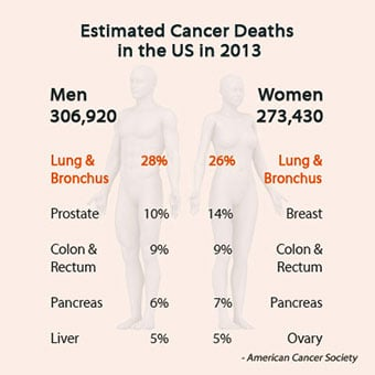 2013 statistics of cancer deaths in the U.S. highlighting lung cancer.