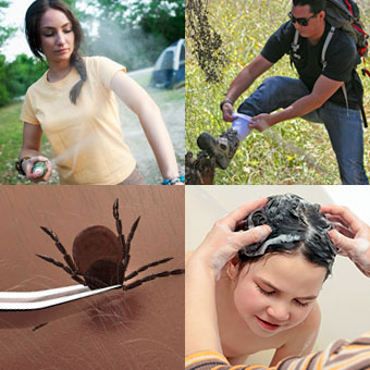 A woman sprays insect repellant while camping, a hiker tucks his pants into his socks, a person uses tweezers to remove a tick, and a child takes a bath.