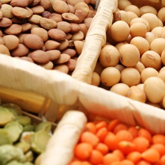 An array of soybeans, chickpeas, and lentils, which are examples of plant estrogens.