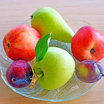 A plate of pears, plums and apples.