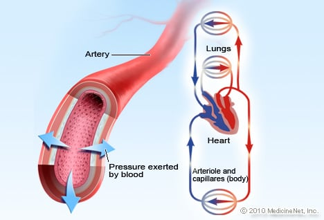 Blood Pressure Illustration