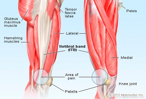 Picture of Iliotibial Band (ITB)