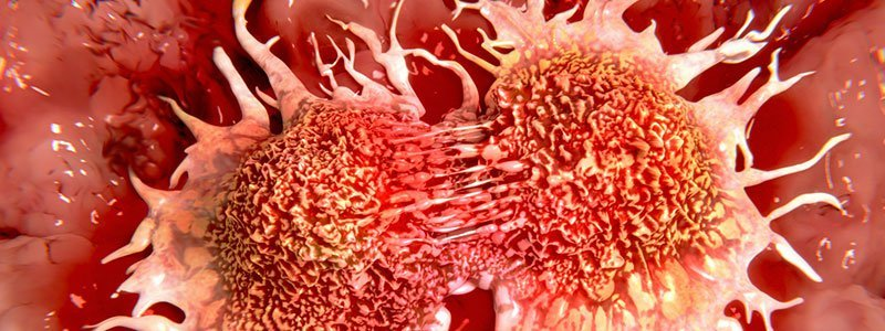 Cancer Quiz FAQs - Frequently Asked Questions - RxList