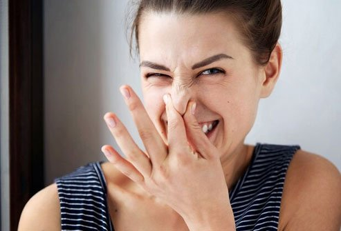 If your breath isn't the freshest, a dry mouth and plaque buildup are probably to blame.