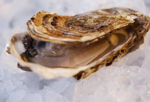 If you like to dine on shellfish, watch out for this bacterial pathogen.