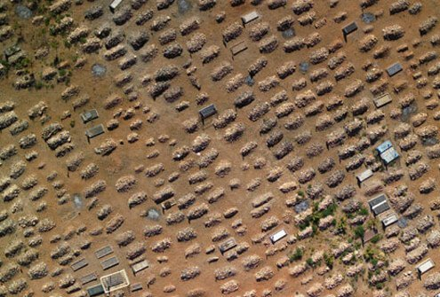 A graveyard of countless coffins in South Africa, where 250,000 died of AIDS in a single year.