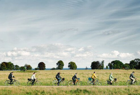 A group of cyclists rides through a grassy pasture.