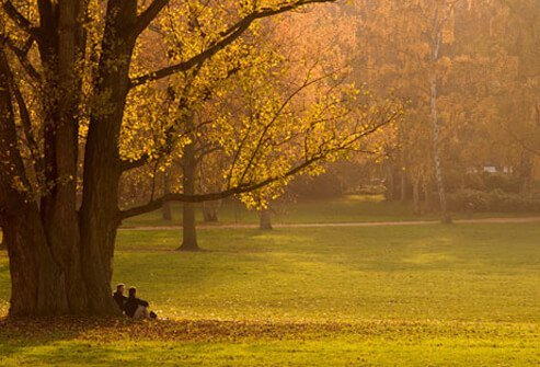 Photo of a couple sitting and talking under a tree.