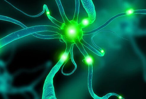 Photo of a neuron cell.