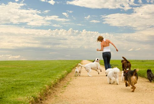 A woman runs with dogs in a field.