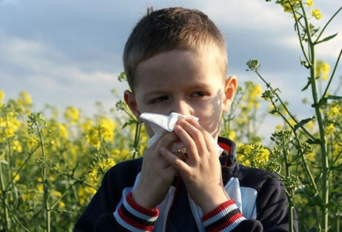 Allergies can cause inflammation and contribute to ear infections by interfering with the Eustachian tube's ability to let air pass into the middle ear.