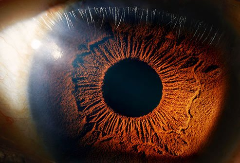 Doctors know that the antioxidants lutein and zeaxanthin help keep you from getting eye diseases like cataracts and age-related macular degeneration.