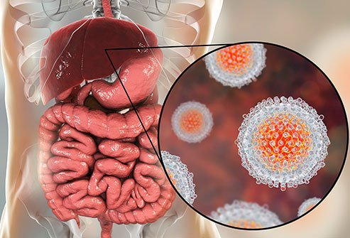 Viral infections are the most common cause of hepatitis.