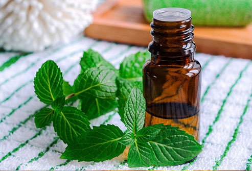 Peppermint may help relieve irritable bowel syndrome and headaches.