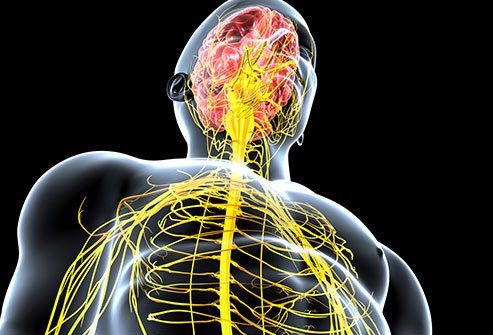 These affect your brain and spine, as well as the nerves that link them together.