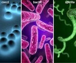 Bacterial Infections 101 Pictures Slideshow: Types, Symptoms, and Treatments