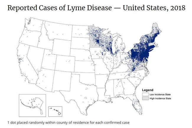 Lyme disease is present in all 50 states, but the illness is most commonly found in the Northeastern US.