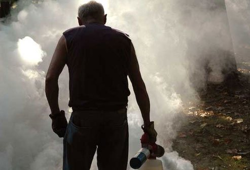Foggers and sprays can temporarily banish mosquitoes from outdoor areas -- foggers can last for hours, sprays for days.