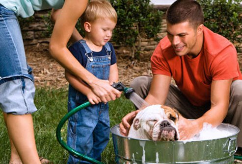 Photo of family bathing dog.