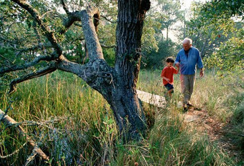 Photo of grandfather walking with grandson.