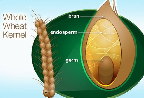 Whole grains include the outer shell (bran) of wheat, barley, rice, or other grain.