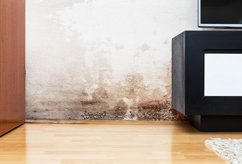 Dampness can lead to mold, and mold in the home can cause serious health problems.