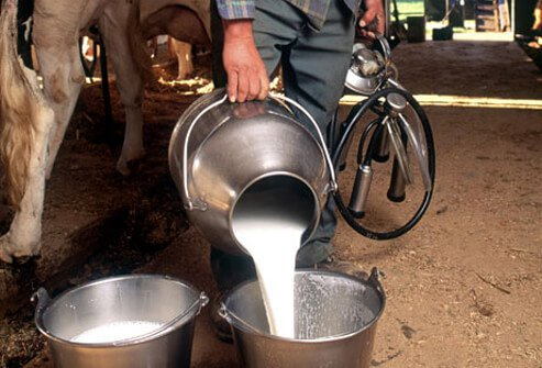 Photo of fresh milk.