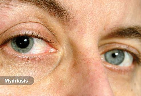 For most people, the dark spot in the center of your eye grows or shrinks to control how much light enters the eye.
